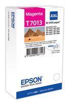 Magenta Epson T7013 XXL Ink Cartridge (C13T70134010 Printer Cartridge)