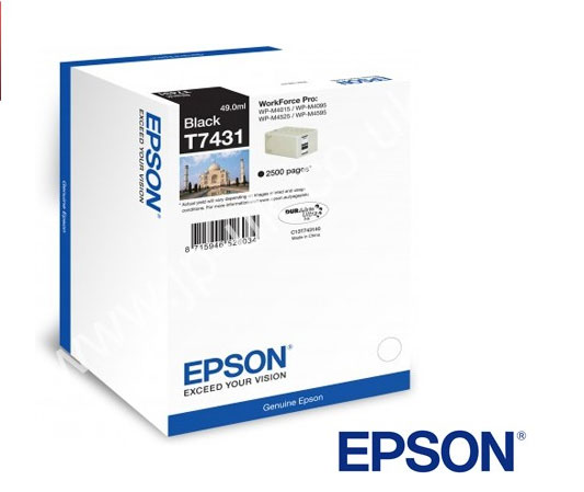 Black Epson T7431 Ink Cartridge (C13T74314010 Printer Cartridge)