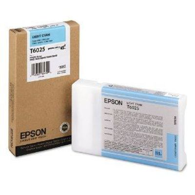 Light Cyan Epson T6025 Ink Cartridge (C13T602500 Printer Cartridge)
