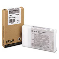 Light Light Black Epson T6029 Ink Cartridge (C13T602900 Printer Cartridge)